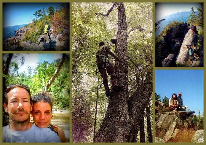 wild solutions pics6